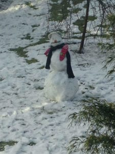 Goal setting for small business ...as told by a snowman